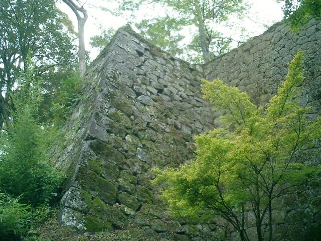 岡城の石垣