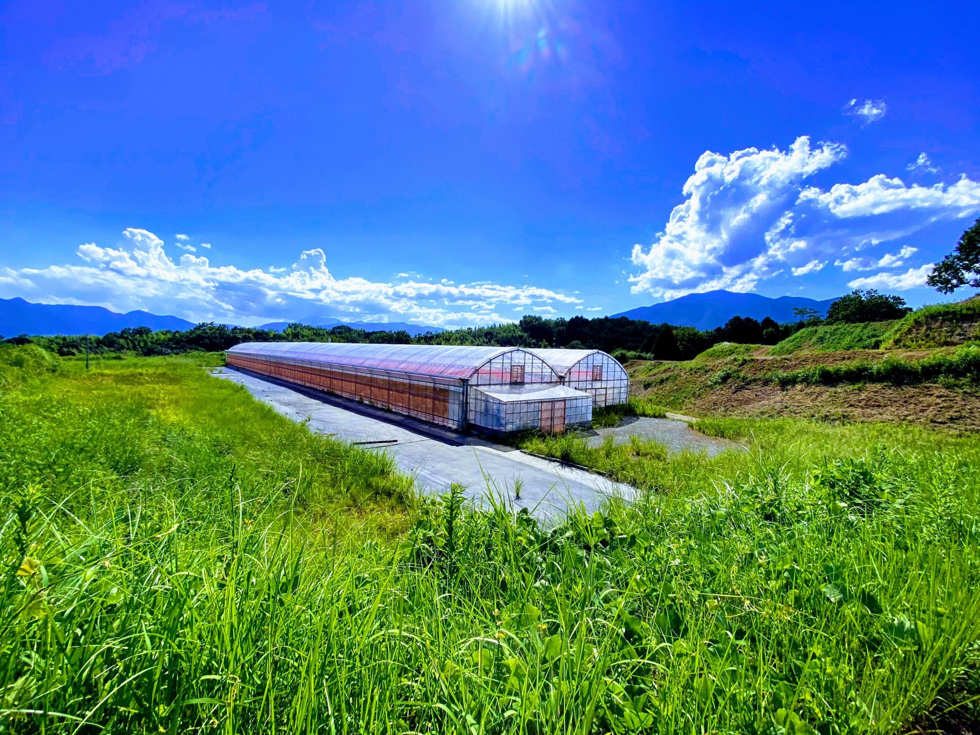 世界一「心ときめく」チャレンジができる場所。農業を中心に広がる未来。