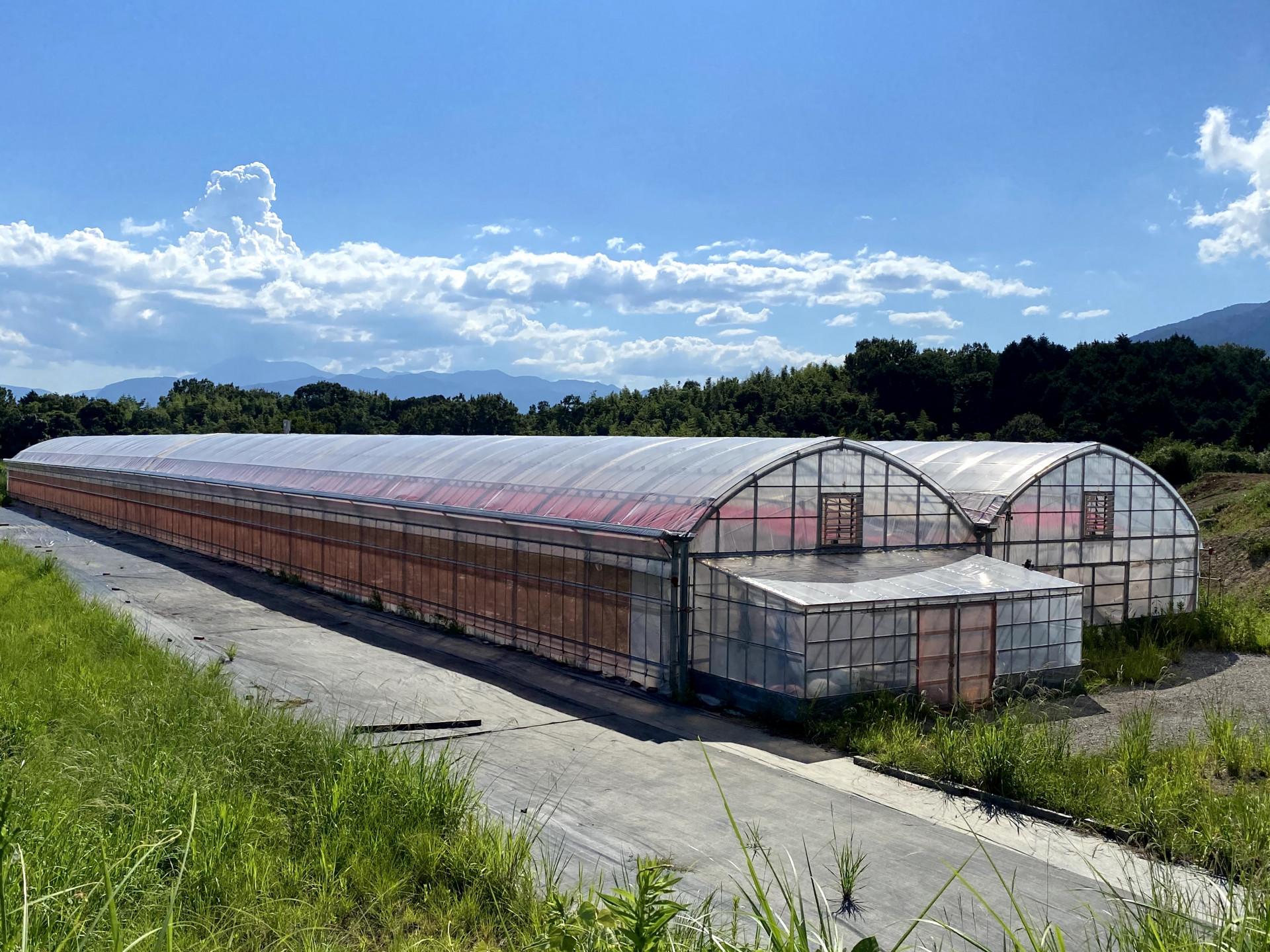 リモージュ農園
